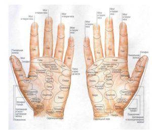 Программа семинара по тайскому массажу кистей рук